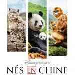 affiche de Nés en Chine